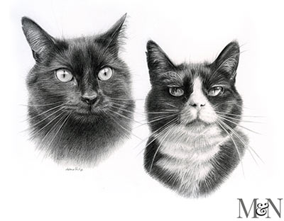 Double Cat Pet Portraits