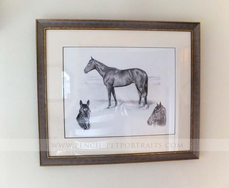 Racehorse Pet Portraits Print Framed