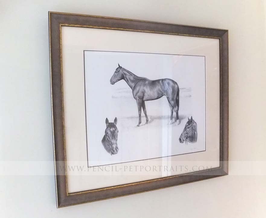 Racehorse Portraits Framed